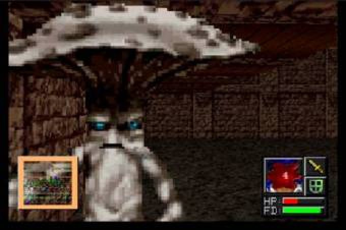 Advanced Dungeons & Dragons: Slayer (1994) by Lion