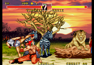 Fighter's History Dynamite  in-game screen image #2