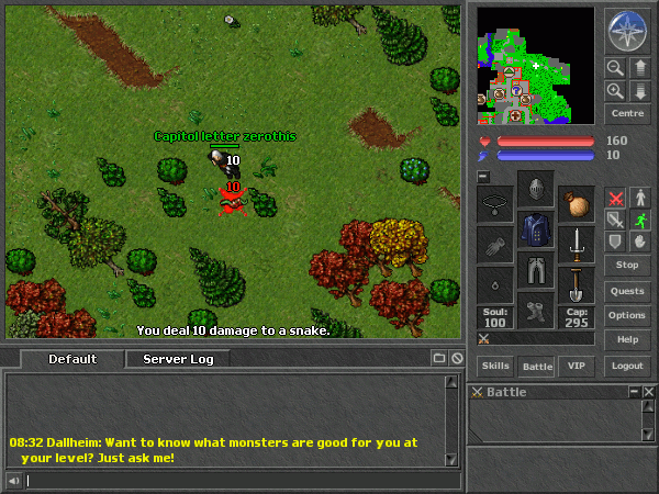 Tibia in-game screen image #1